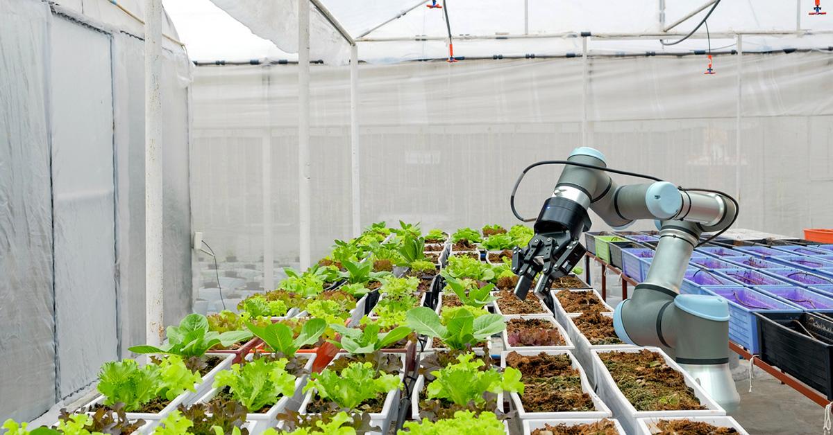 Agricultural Robots: The Future of Job Creation | RIA Robotics Blog